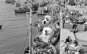 O Algarve e os Algarvios