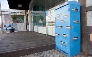 Arte urbana decora caixas de eletricidade em Carvoeiro