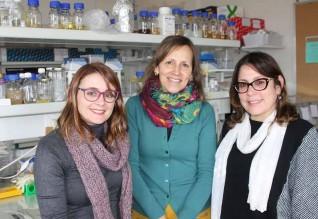 As investigadoras Tânia Caetano, Sónia Mendo e Cláudia Covas.
