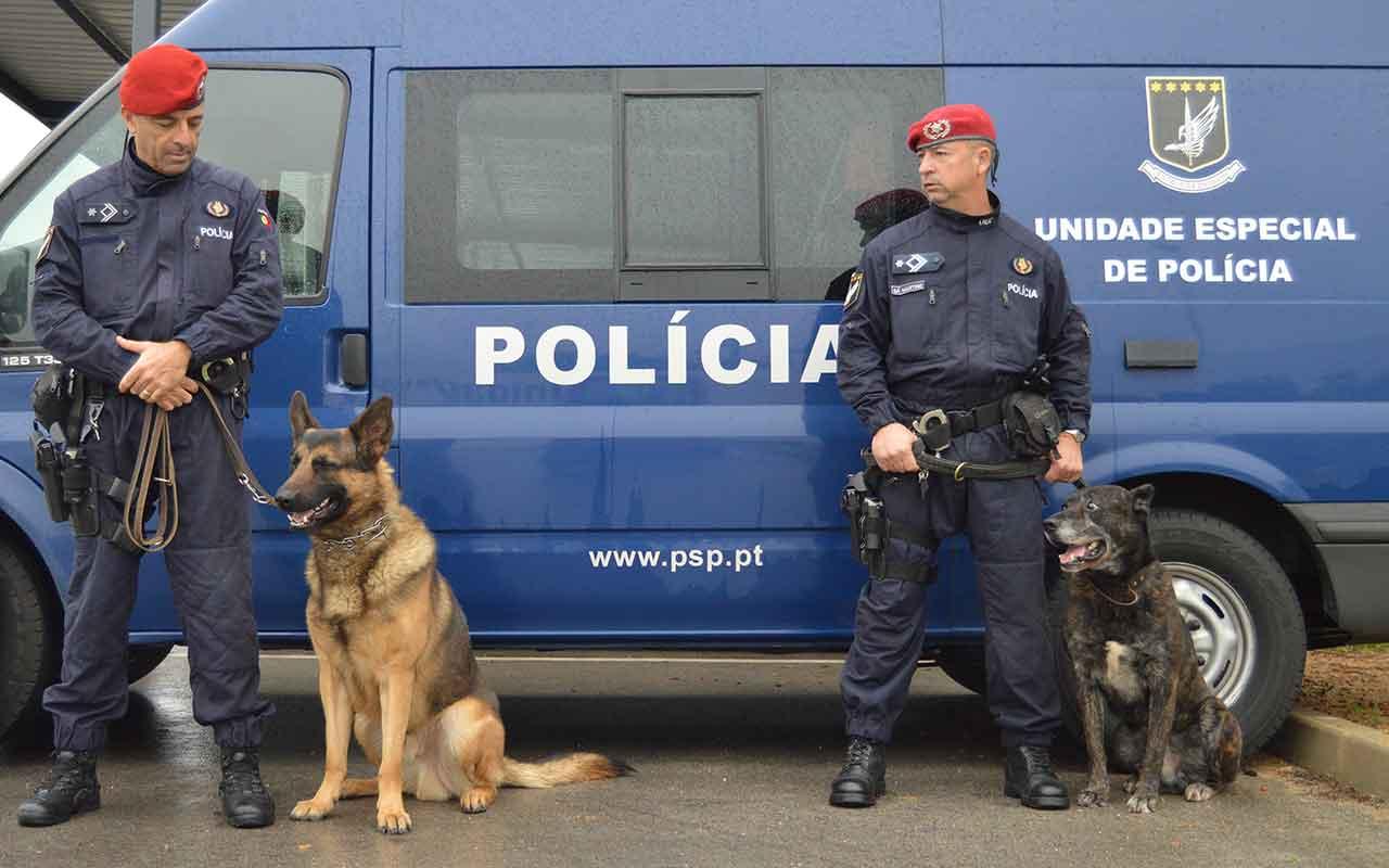 PS Faro pede reuniões a Forças de Segurança - Barlavento Online