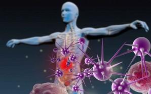 Imunoterapia, um novo caminho na busca da cura do cancro