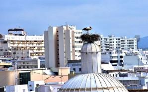 PDM de Faro está em período de participação pública