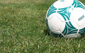 Deputados do PSD questionam governo sobre corrupção no futebol