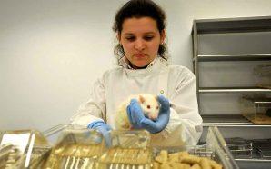 Investigadores da UTAD conseguem avanços no estudo do cancro da…