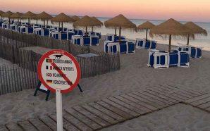Não leve animais para a praia!