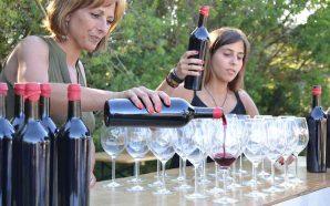 FATACIL renovada celebra Lagoa Cidade do Vinho 2016