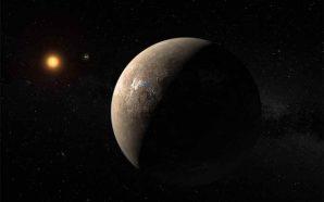 Terra 2.0 em torno de Proxima Centauri?