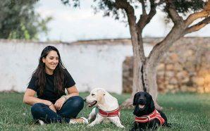 Projeto com cães de ajuda social inova no Algarve
