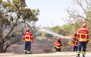 PJ detém suspeita pelo crime de incêndio florestal na Conceição…