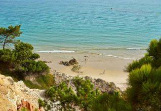 Pine-Cliffs_Foto-Helio-Ramos