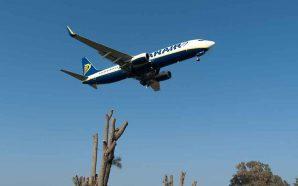 Faro ligado a mais de cem aeroportos durante o verão…