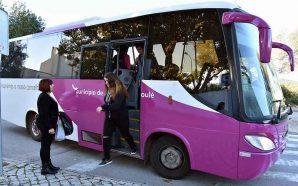 Loulé investe em transporte escolar