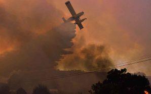 Almargem reage aos incêndios em Monchique