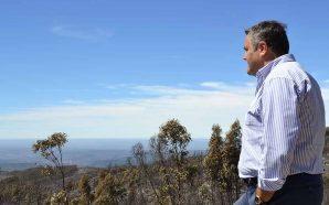 Rui André desafia ALGAR a criar ecopontos para verdes e…