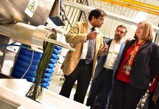 A SPAROS, empresa de biotecnologia com sede em Olhão viu apoiado o projeto «ORNAFEEDS», novos alimentos ricos em biomassas de microalgas e zooplancton para o mercado da aquariofilia, com 523 666,48 euros.