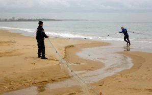 Apreendida arte de pesca com 200 metros de comprimento em…