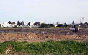 Almargem contesta obras em zona húmida de Lagoa
