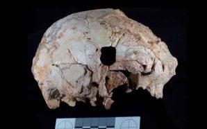 Finalmente um fóssil antigo descoberto em Portugal