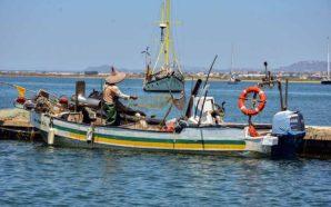 Algarve afirma empenho na mitigação e adaptação às alterações climáticas
