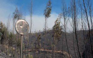 Incêndios, baixa pombalina e territórios turísticos