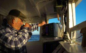 Autoridade Marítima lança alerta sobre estado do mar nos próximos…