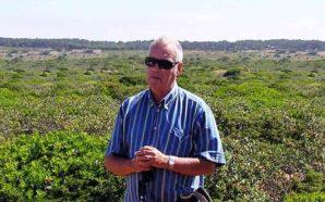 Almargem lamenta morte de José Manuel Rosa Pinto