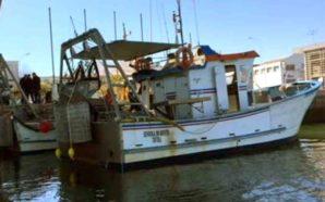 Polícia Marítima apreende mais de 160 kg de bivalves a…