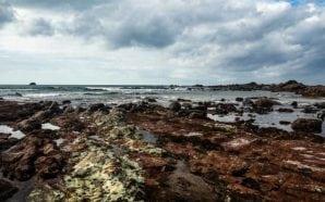 Associação Livre de Fotógrafos do Algarve apresenta Mar Nostrum no…