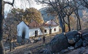 Apoio às vítimas dos incêndios de Monchique pode ter procedimento…