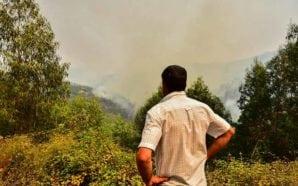 Segurança Social garante apoio às populações afetadas pelo incêndio de…