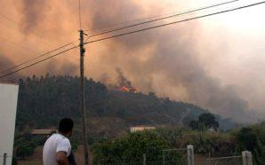 PJ detém incendiário suspeito de atear últimos fogos em Monchique