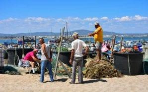 Governo reconhece Culatra como núcleo residencial piscatório consolidado na União…