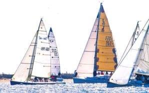 Regata memorial PICUCA disputada por 17 veleiros na Ria Formosa