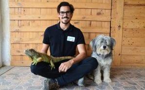 Algarve tem novo hotel para todos os animais
