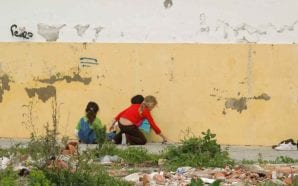 Instituições do Algarve fora do programa nacional de combate à…