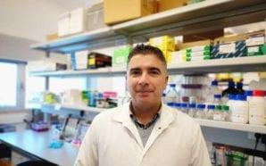 Investigadores da UAlg fazem importantes progressos no estudo do cancro…