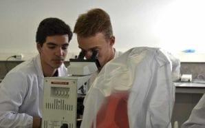 Alcoutim leva estudantes do concelho aos cursos de verão da…