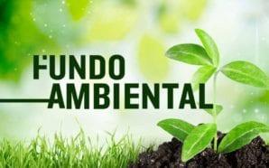 Loulé organiza formação para adaptar espaços verdes às alterações climáticas