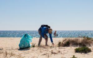 Zoomarine convida mãos amigas a ajudar na Operação Praia Limpa
