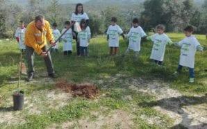 Loulé comemora Dia das Florestas com sensibilização e educação da…