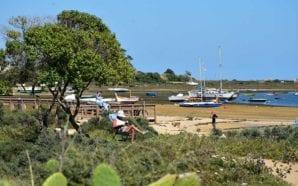 PS Algarve aprova declaração de compromisso para a sustentabilidade da…