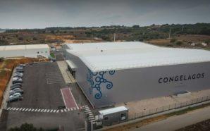 Grupo Battaglia inaugura fábrica de processamento de peixe em Lagos