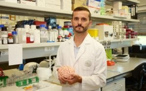 Investigadores da UAlg vão estudar novas terapêuticas para Doenças de…
