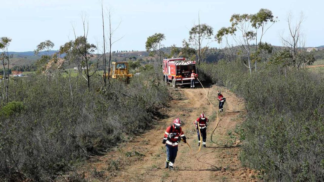 Portimão prepara combate aos incêndios