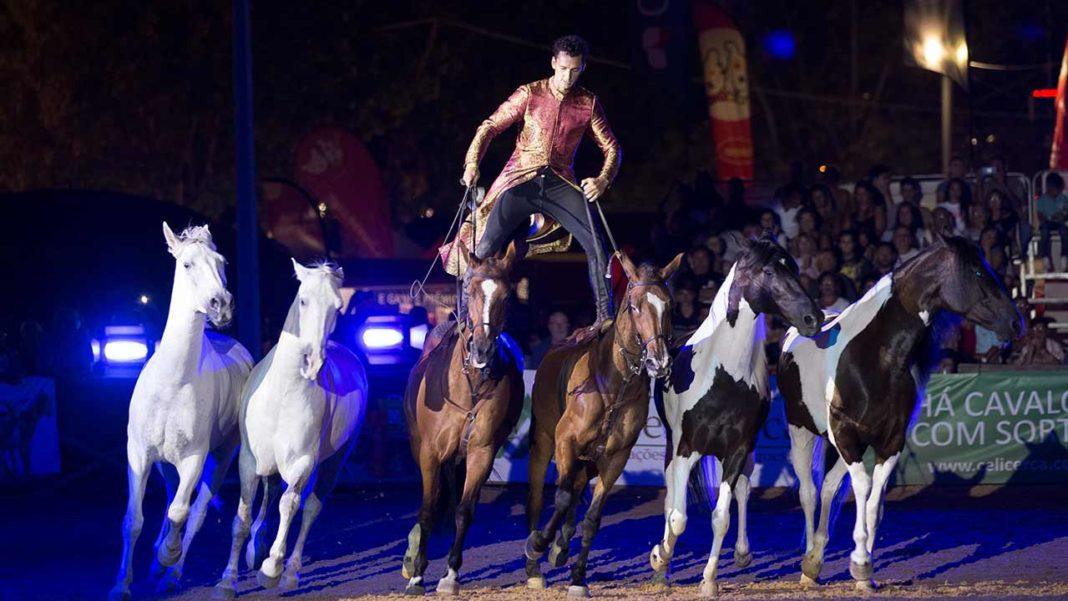 FATACIL Equestre continua a mostrar magia dos cavalos