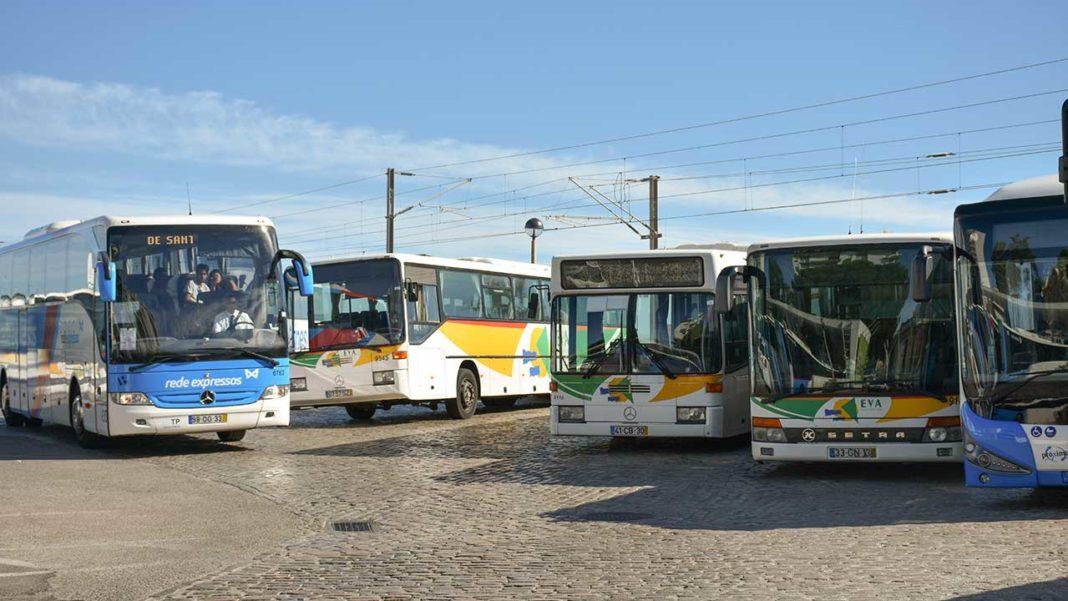 Algarve e Alentejo litoral reforçam transporte público regional