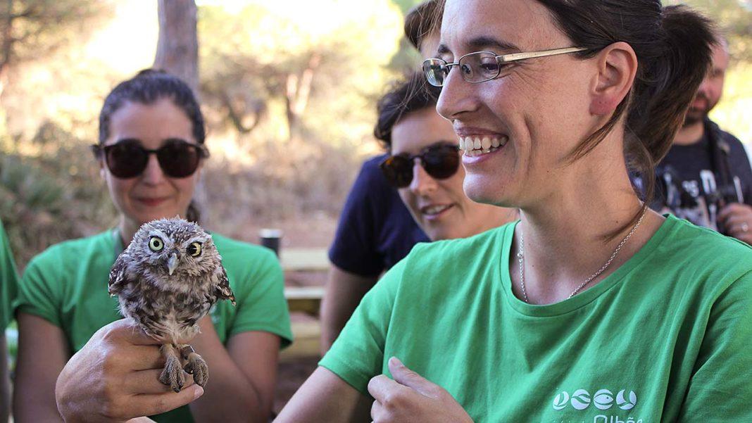 RIAS celebrou 10 anos a reabilitar a vida selvagem do sul de Portugal