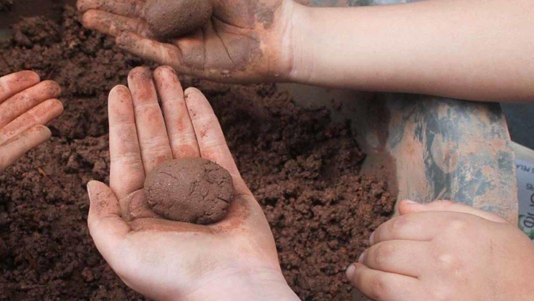 Lagoa lança «bolas de sementes» para combater a erosão