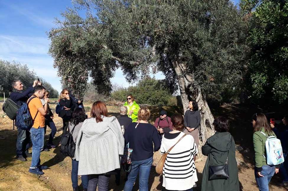 Países do mediterrâneo europeu participaram num curso Internacional para a Dieta Mediterrânica