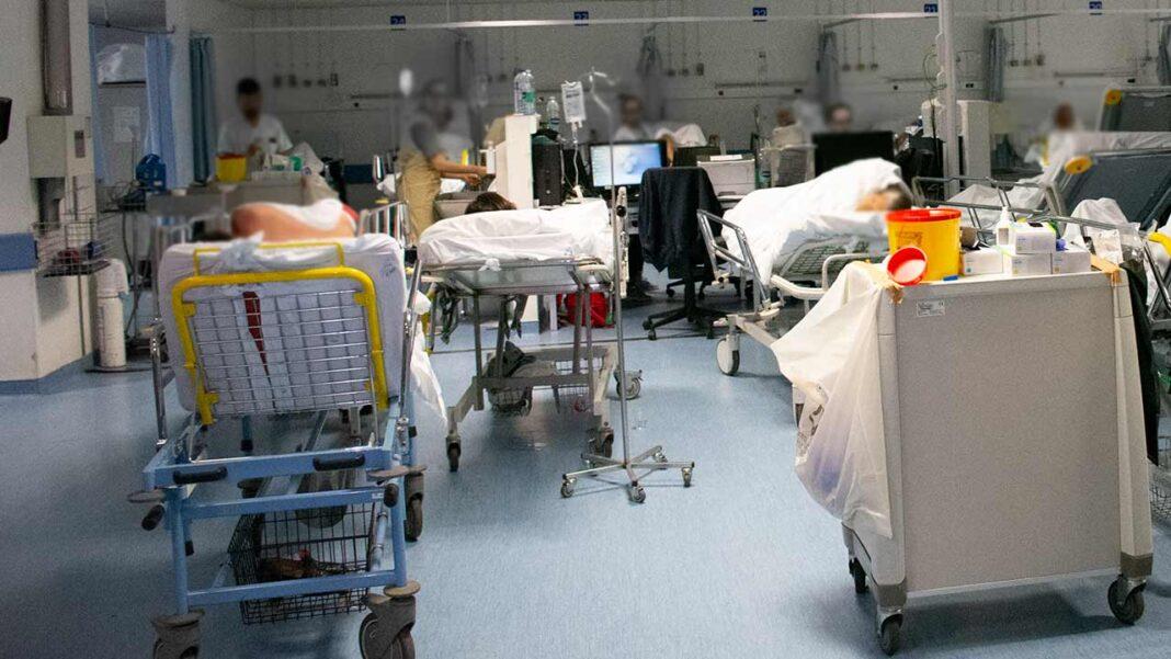 Bloco de Esquerda (BE) quer saber se existem planos e medidas nas unidades de saúde do Algarve para prevenir e combater a violência sobre profissionais.